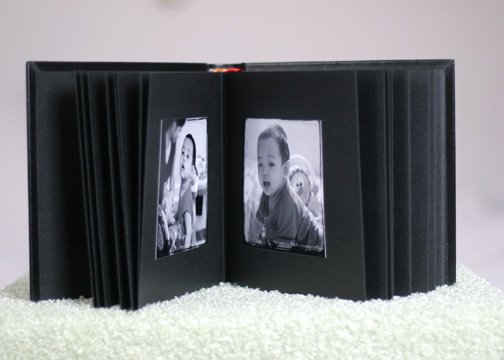 Logan Album in Black Bonded Leather (8x10)